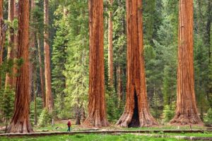 The 50 Most Beautiful Places in America
