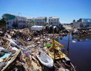Hurricane Michael survivors scramble for food, water as death toll rises