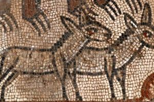 Rare mosaic depicting Noah's Ark discovered in ancient synagogue