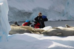 Why traveling to Antarctica may be the hottest ticket in town