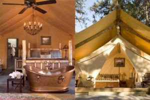 Popping tents: Glamping goes mainstream