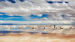 The Photo Tour: Bolivia's Red Lakes and Salt Flats